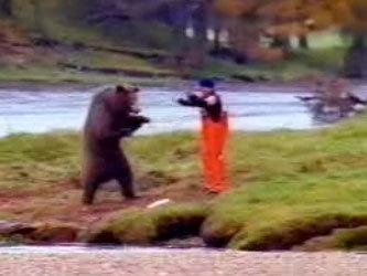 видео медведь дерется с рыбаком