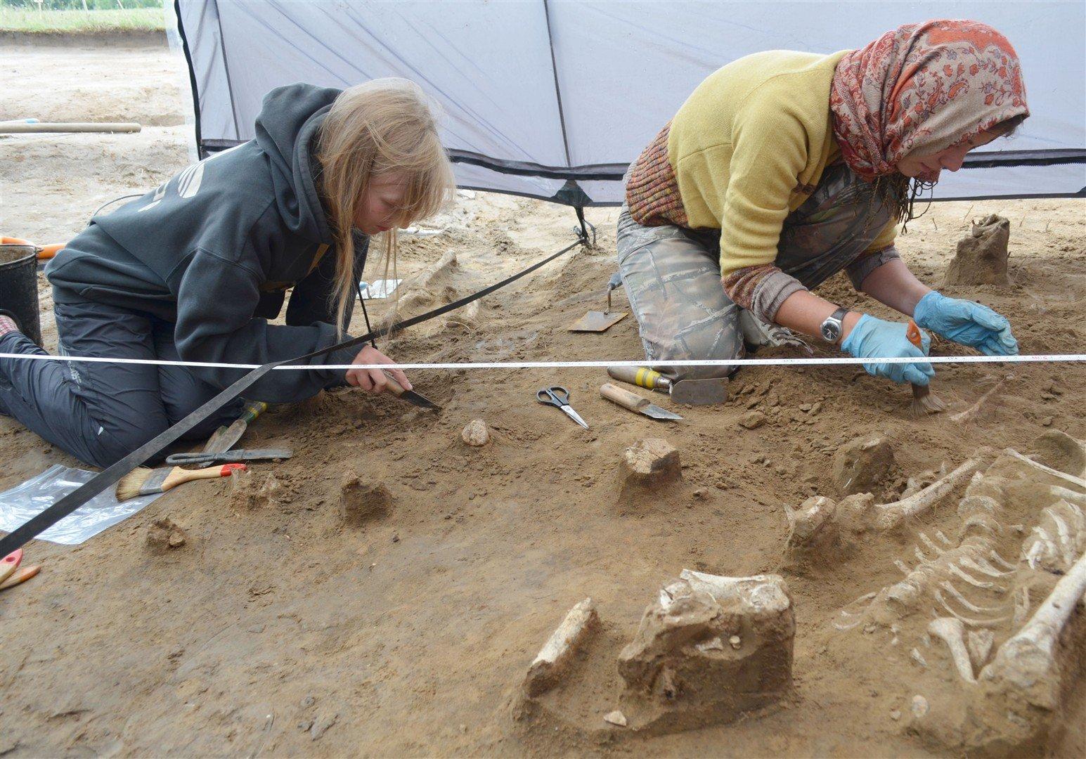 Студенты КемГУ обнаружили курган с захоронениями людей новокаменного века