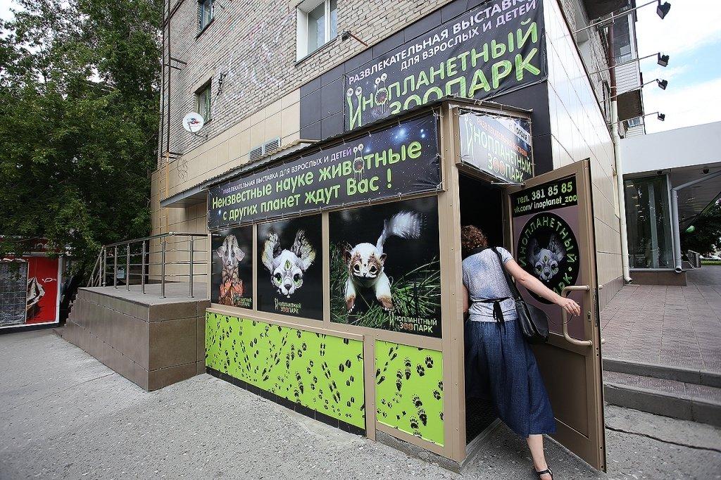 intimnaya-plasticheskaya-hirurgiya-v-nizhnem