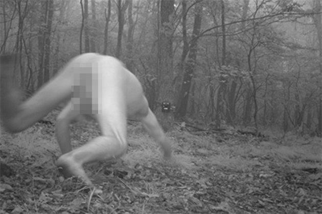 Неожиданный гость в лесу