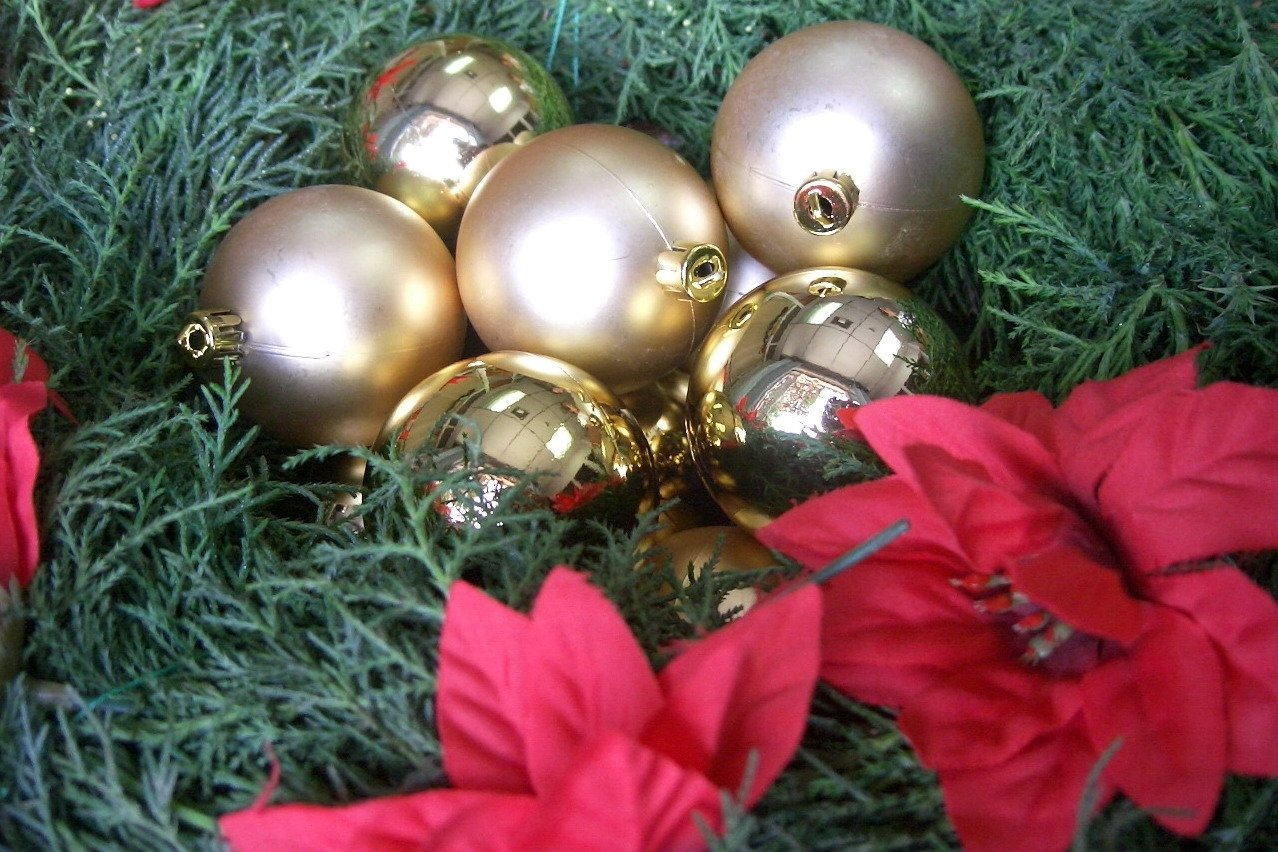 Антинаучное шоу пройдет в Академгородке в Рождество