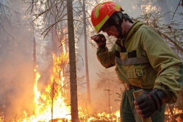 ВСибири засутки удвоилась площадь лесных пожаров