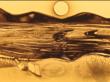 Художница из Бурятии нарисовала песком судьбу Байкала