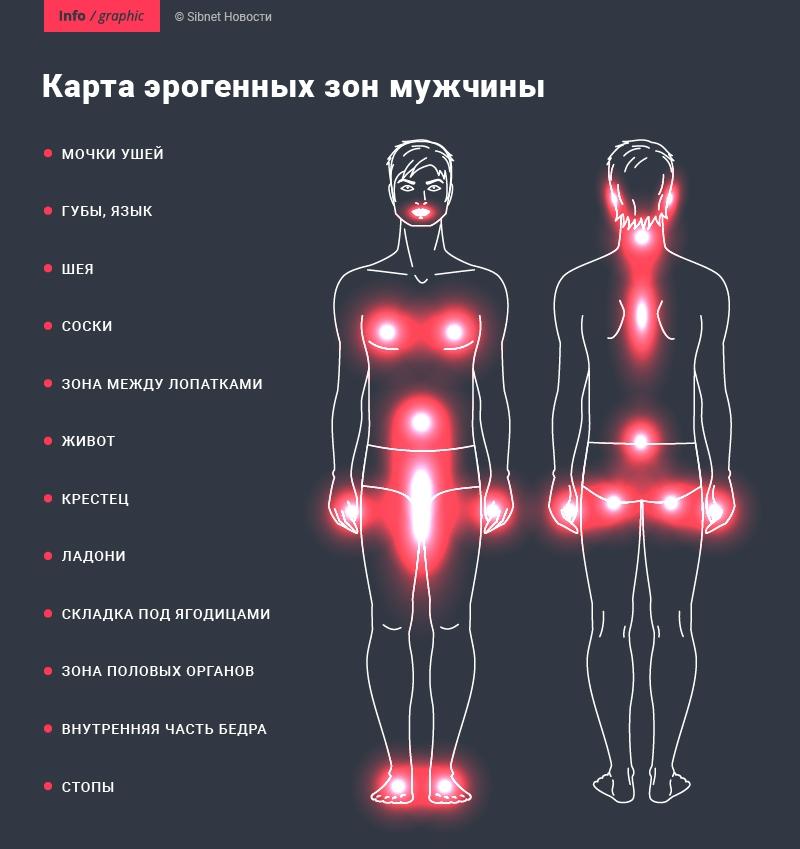 Эрогенные точки у мужчин в картинка