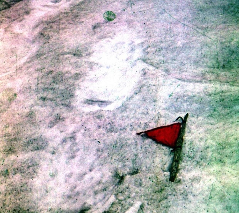 След снежного человека, обнаруженного туристами